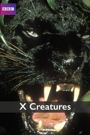 The X Creatures