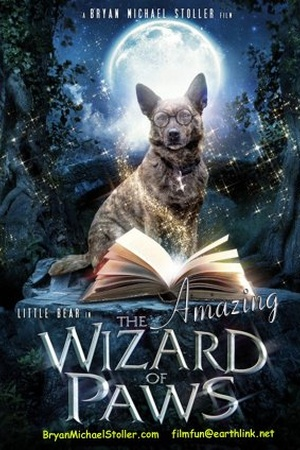 The Amazing Wizard of Paws