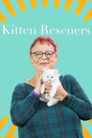 Kitten Rescuers