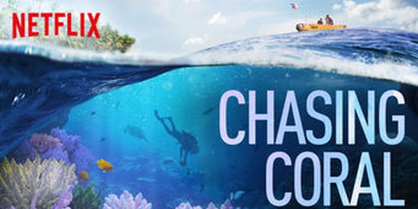 'Chasing Coral' is a Netflix movie about the effects of climate change on coral reefs
