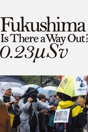 Fukushima: Is There a Way Out? 0.23μSV