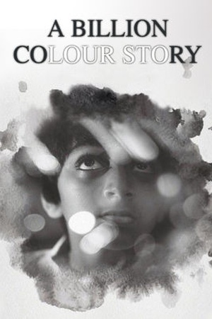 A Billion Colour Story