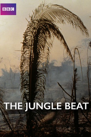 The Jungle Beat