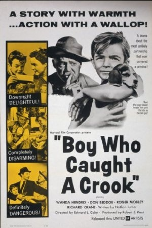 Boy Who Caught a Crook
