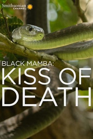 Black Mamba: Kiss of Death