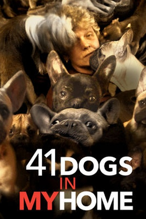 41 Dogs in My Home