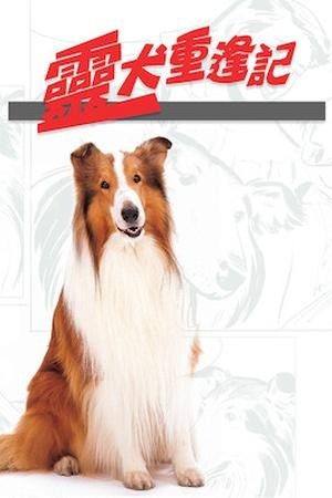 The Magic of Lassie