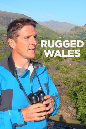 Rugged Wales