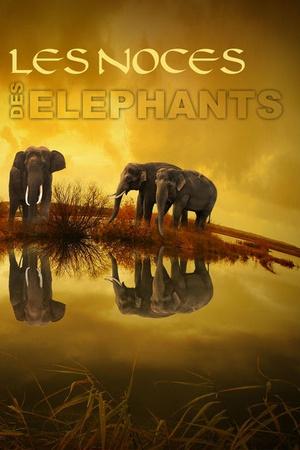 Les Noces des Eléphants