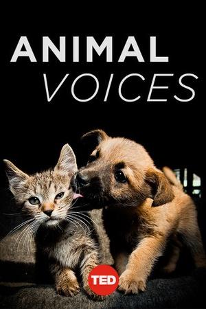 TEDTalks: Animal Voices
