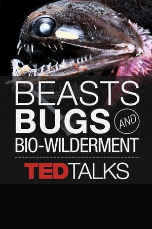 TEDTalks: Beasts, Bugs and Bio-wilderment