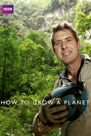 How to Grow a Planet