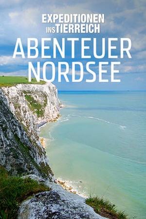 Expeditionen ins Tierreich: Abenteuer Nordsee